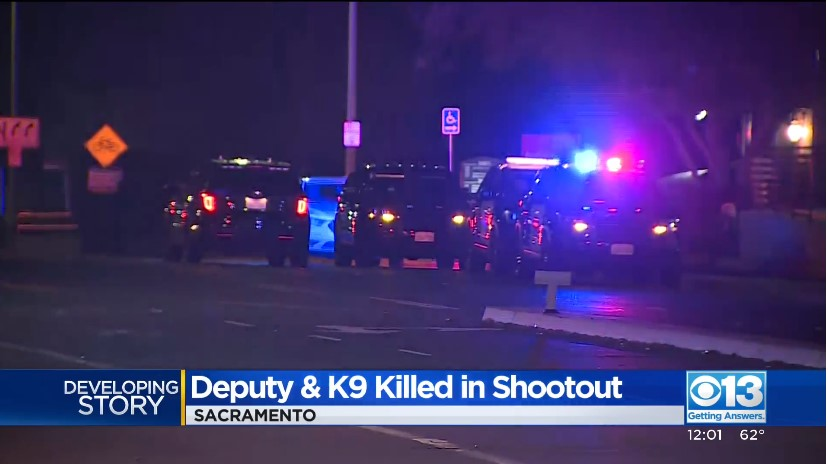 CA Deputy and Sheriff's K-9 Killed in Monday Night Shooting