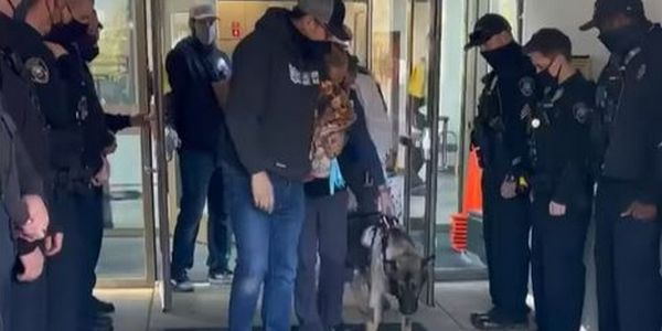 Severely wounded K-9 Arlo returned home to a hero's welcome. (Photo: Thurston County SO)