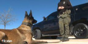 TX K-9 Handler and Dog Stop Carjacking