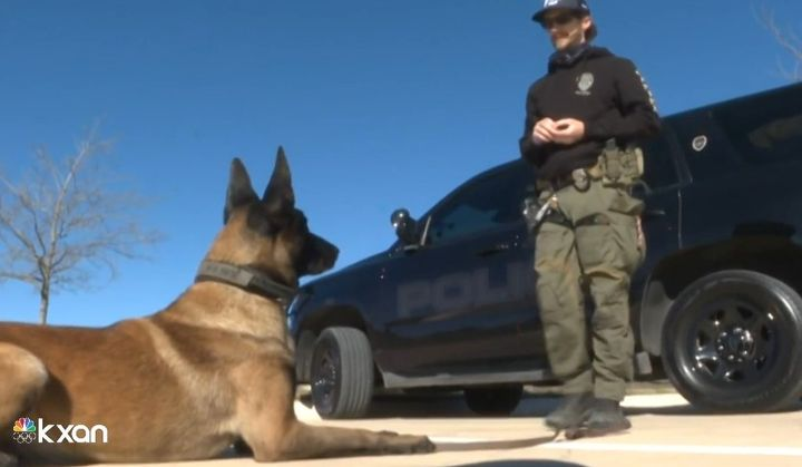 San Marcos, TX, Officer Stephen Sarver and K-9 Rex are credited with stopping a carjacking. (Photo: WXAN screen shot) -