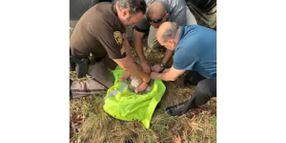 Michigan Deputies Rescue Baby Abandoned in Woods