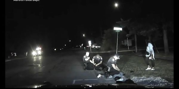 IL Agency Releases Video Showing Officer Under Attack in Strangling Incident