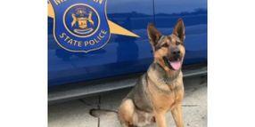 Michigan State Police K-9 Killed in Crash