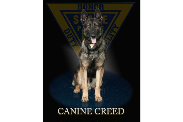 New Jersey State Police K-9 Creed was stabbed Monday. Creed is reportedly recovering. (Photo: New Jersey SP) -