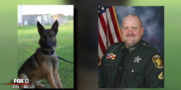 Video: Florida Deputy Kills Partner's K-9 to End Attack
