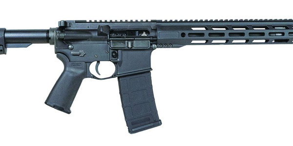 Rise Armament Watchman Rifle