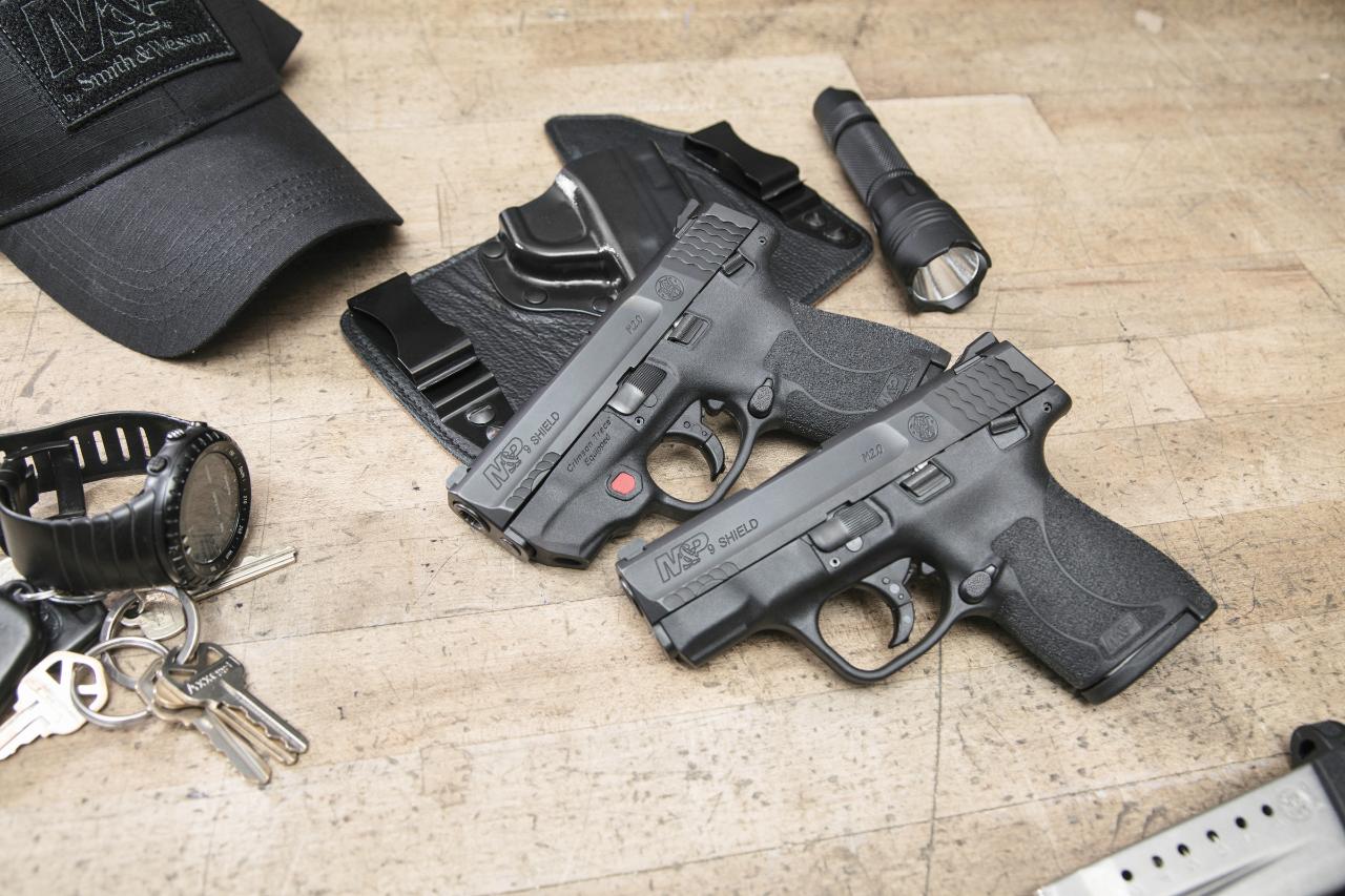 Firearms 2018