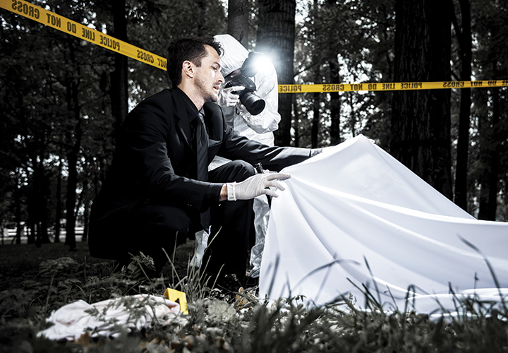 Animal Activity and the Crime Scene