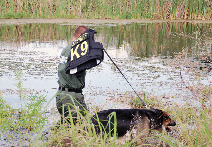 Getting the Most Out of K-9 Units