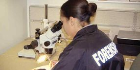 What CSIs Want You to Know