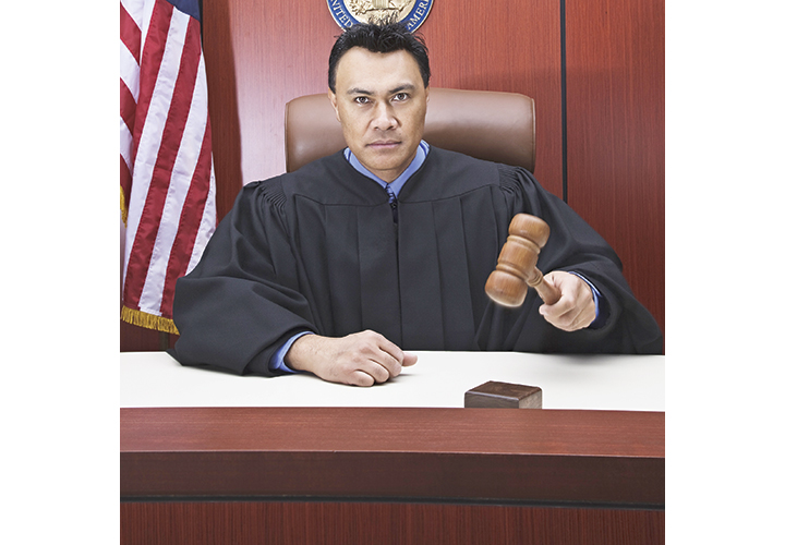 If It Pleases the Court