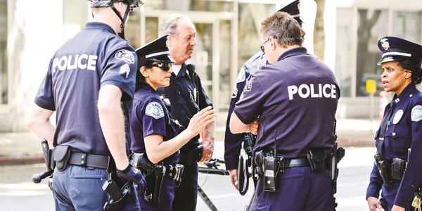 Mid-level police officers play a pivotal role in balancing the demands of task-oriented and...