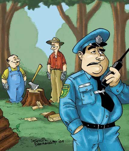 Illustration: Sequoia Blankenship