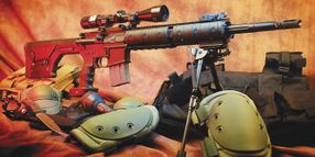 DPMS Panther Mini SASS Rifle