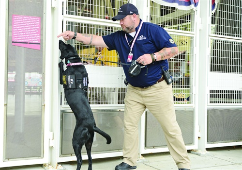 K2 Solutions is one of the largest providers of explosive detection dogs in the United States. (Photo: K2 Solutions)