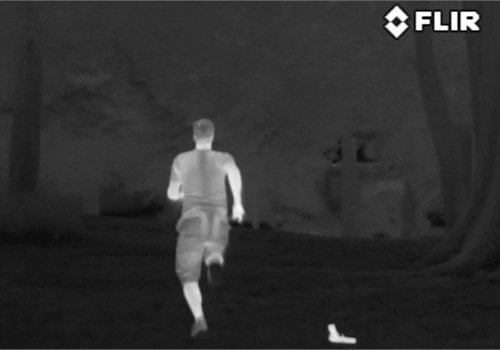Thermal systems are excellent for locating people in wooded areas. Photo: FLIR Systems