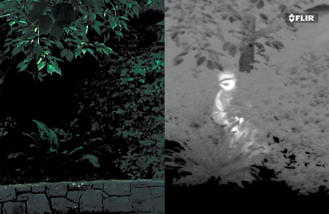 Night Vision goggles (left) are useless against a camouflaged, motionless suspect hiding in vegetation, but a thermal imaging device easily finds the bad guy.