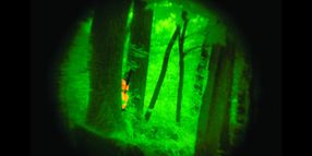 20 Things You Need to Know About Night Vision