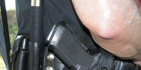 Law Enforcement Handguns 2006