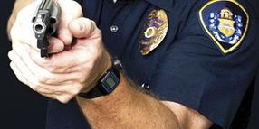 Special Report: Backup Gun Policies--Gun Control
