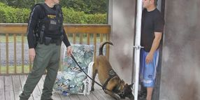 Dogs, Drugs, and the Fourth Amendment