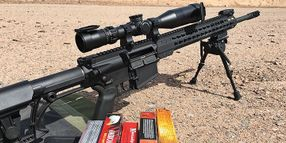 Armalite AR-10 20-Inch Tactical Rifle