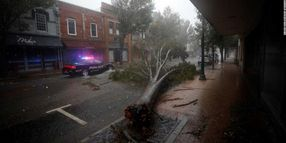 Hurricane Response: Weathering the Storm