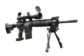DPMS/Panther Arms LRT-SASS Rifle