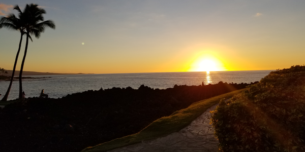 I promised myself—and more importantly, my family—that during a recent vacation to Hawaii I...