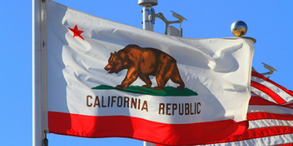 A Brief Review of the Flaws in California's AB 931 UOF Legislation
