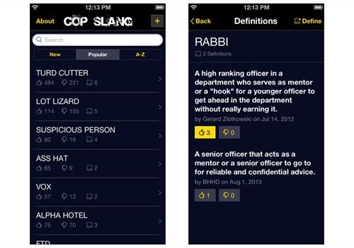 Screenshot via PoliceMag.