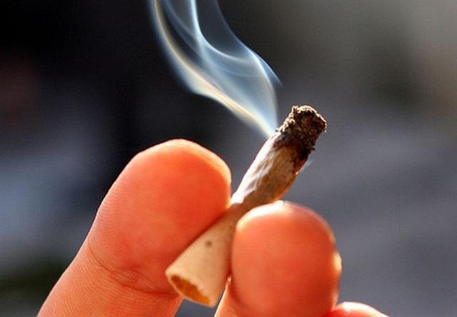 Marijuana and the Fall of Civilization