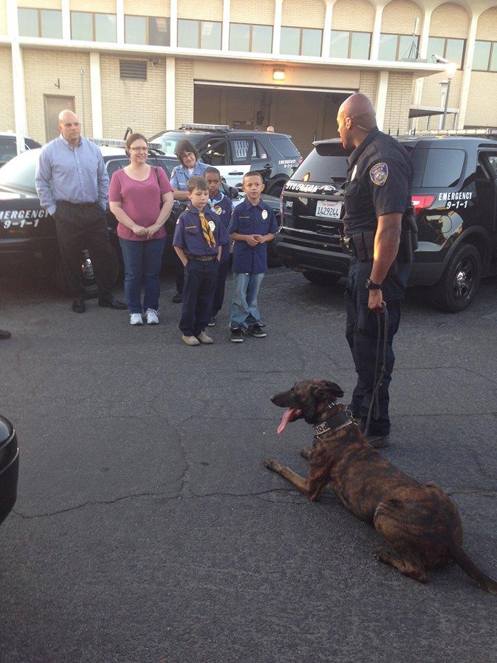 California K-9 Dies After Air Conditioner Fails in Patrol Car