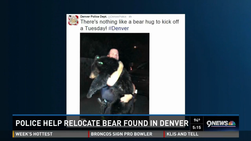 Video: Denver Officer's Pic with Bear Cub Goes Viral