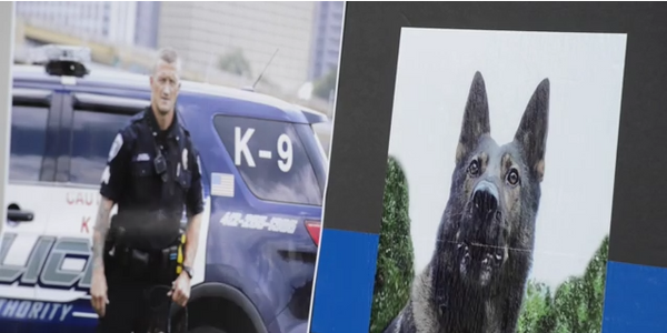 Video: Hundreds of Officers Gather in Pittsburgh to Honor Slain K-9