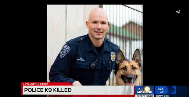 Video: Utah Police K-9 Killed, Suspect Shot in SWAT Standoff