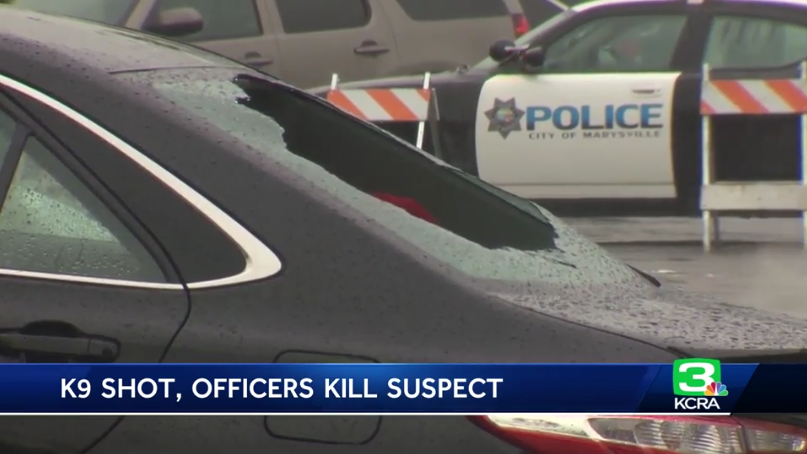 California Man Shot K-9 Before Officers Opened Fire, Officials Say