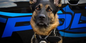 Man Selling T-shirts in Support of Man Accused of Killing Michigan K-9