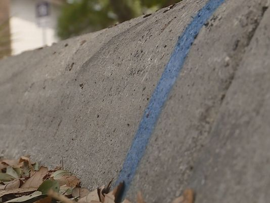 Video: Man Urges Homeowners to Paint Blue Lines on Curbs to Show Support for Police