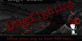 Dogfighting Game Renamed, Back on Sale