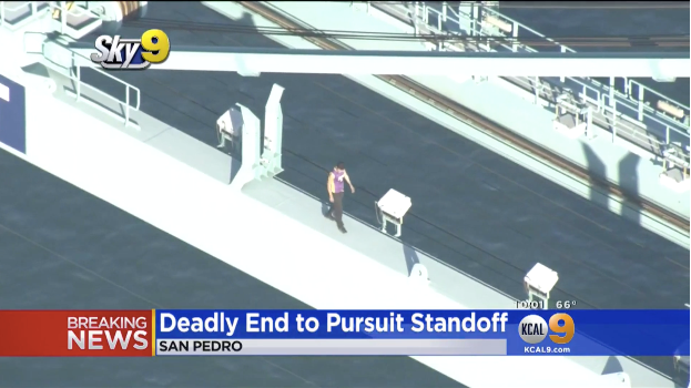 Video: Car Theft Suspect Dies in Jump, Fall from Los Angeles Port Crane