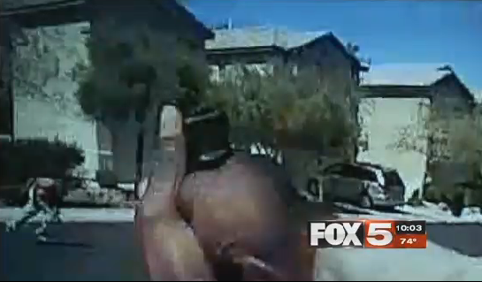 Video: Las Vegas K-9 Nicky was Killed by Friendly Fire During Gunfight