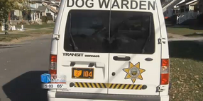 Video: Off-Duty Ohio Officer Seriously Injured in Dog Attack