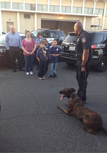 Stockton (Calif.) PD K-9 Nitro died in a patrol when the air conditioning failed. His handler was outside working crowd control in the 106-degree weather. (Photo: Stockton PD)
