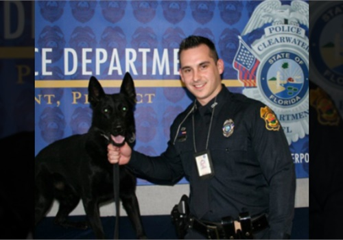 Clearwater Police Department Sgt. Michael Spitaleri with K-9 partner Major. (Photo: Clearwater PD)