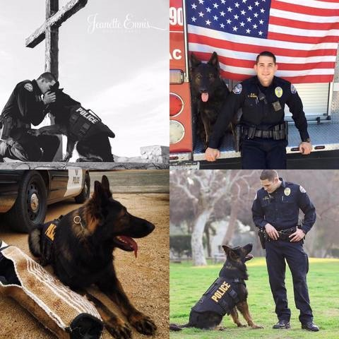 California City (CA) Police Department K-9 Ty died Wednesday from an injury that occurred on duty earlier this year. (Photo: California City PD/Twitter)