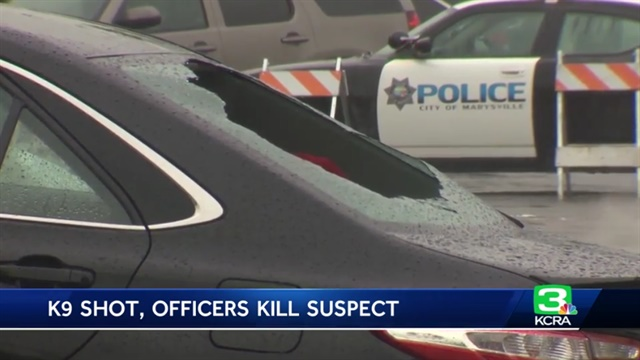 A California man shot a K-9 before he was fatally shot. (Photo: KCRA screenshot)