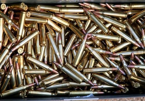 California Lt. Gov. Pushes Background Checks for Ammunition Initiative
