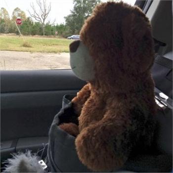 The little girl's teddy bear riding shotgun in Officer Josh McConnell's patrol car. (Photo: Facebook)