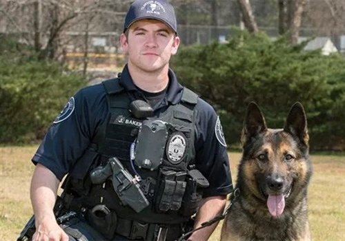 K-9 Odin was stabbed in the neck and jaw apprehending a murder suspect. (Photo: Clayton County PD)